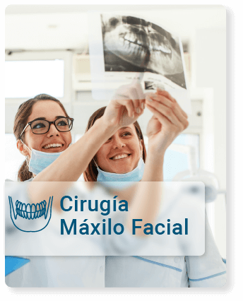 maxilo-facial